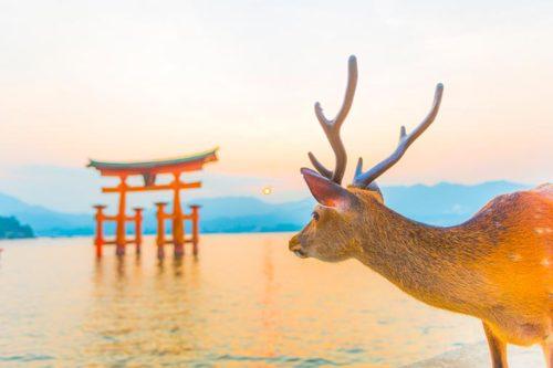広島県観光
